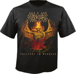 VADER - Solitude In Madness TS